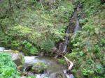 小さな小さな滝