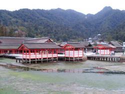 in 宮島