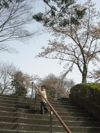 公園階段1