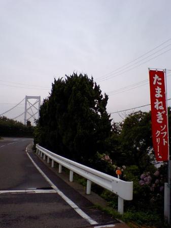 03CA350208.jpg