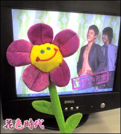 花の縫ぐるみと僕彼の壁紙