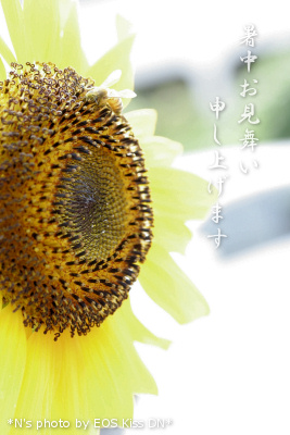 shotyu072.jpg