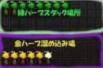 20060124_薬草庫3