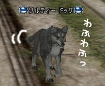 20070108040107.jpg