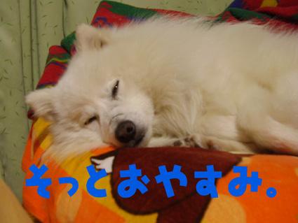 そっとおやすみ
