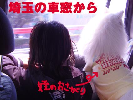 埼玉の車窓から
