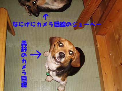 那須にて01