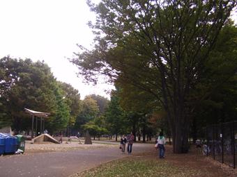 小金井公園内