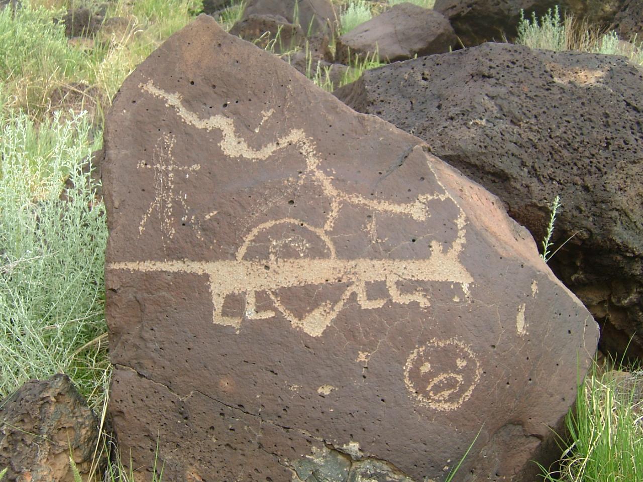 petrograph