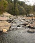 温泉のすぐ目の前を流れる川