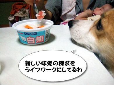 アイスも好き