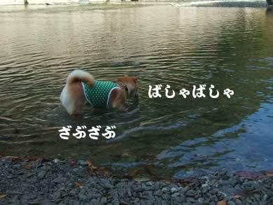 み、水に!