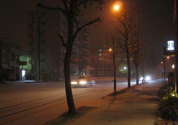 2006.11.12-2.jpg