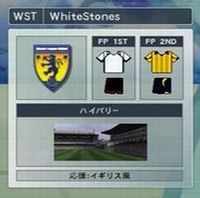 team2008.jpg