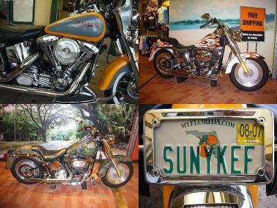 FLSTC Softail Classic Evolution 1340 Harley-Davidson