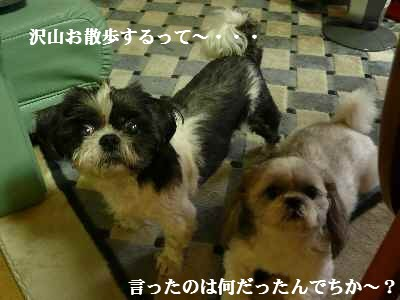 A2_20070928003517.jpg