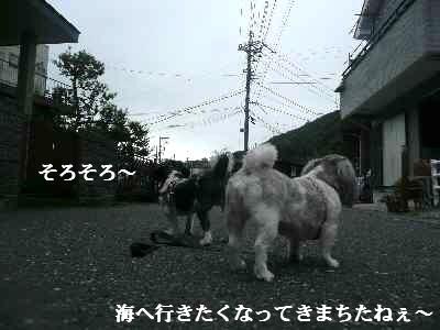 A7_20070831020133.jpg