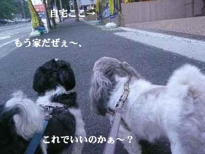 A7_20070914001357.jpg