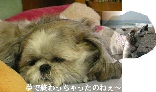 B2_20071009014735.jpg