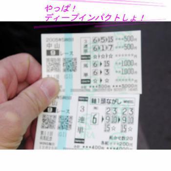 20051229010914.jpg