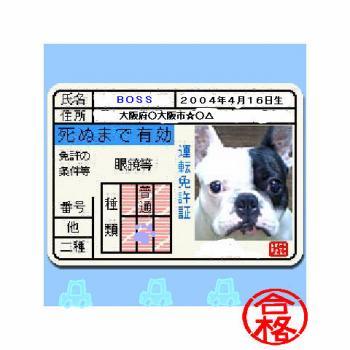 20060404001943.jpg