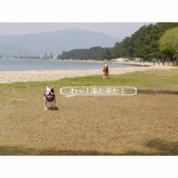 20060521011008.jpg
