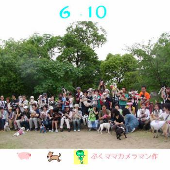 20060617132002.jpg