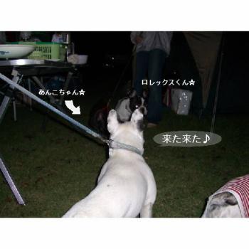 20060930054300.jpg