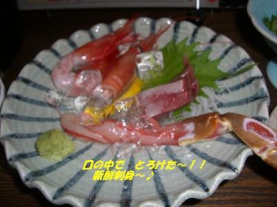 20070304032111.jpg