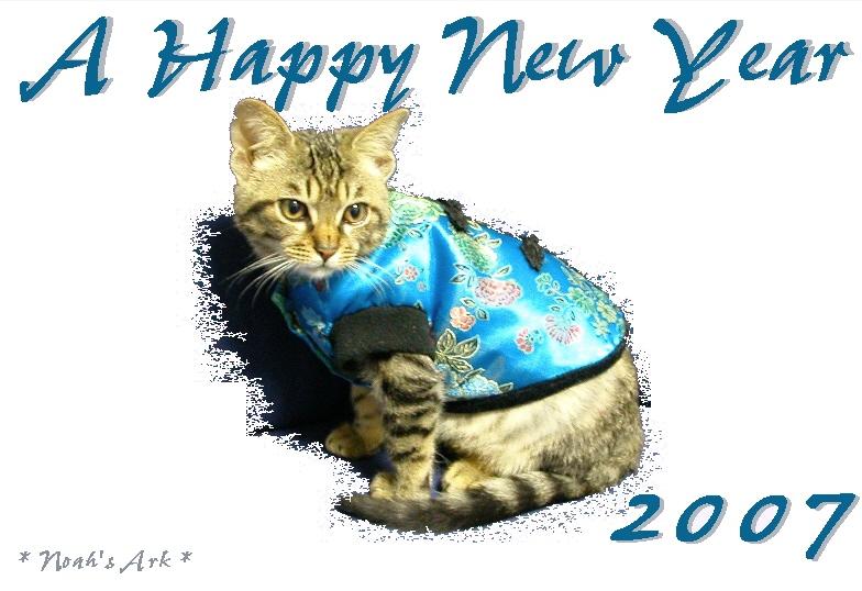 A Happy New Year  ミ☆。.゚+:ヾ(*・ω・)シ.:゚+。☆彡