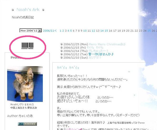 ありがとうございます! 。.゚+:ヾ(*・ω・)シ.:゚+。