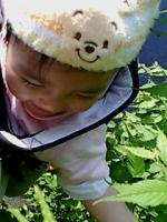 20060521201016.jpg