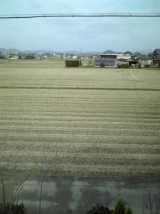 20070106131223.jpg