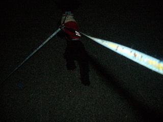 2006103101.jpg