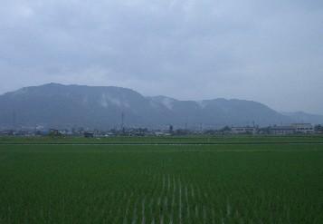 2007061003.jpg