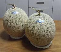 melon1.jpg