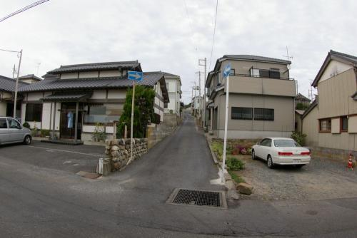 IMGP0988-4sinura.jpg