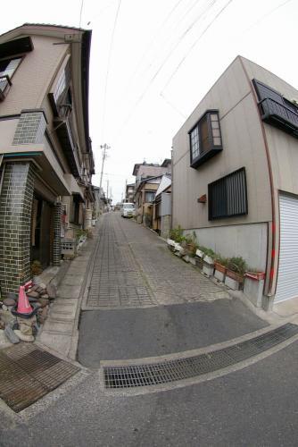 IMGP0996-7honnura.jpg