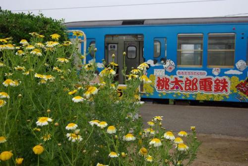 IMGP2061-tokawa0506.jpg