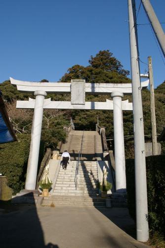 IMGP3939-saruta.jpg