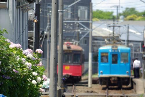 IMGP5976-nakaaji.jpg
