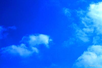 ブルー&ホワイト