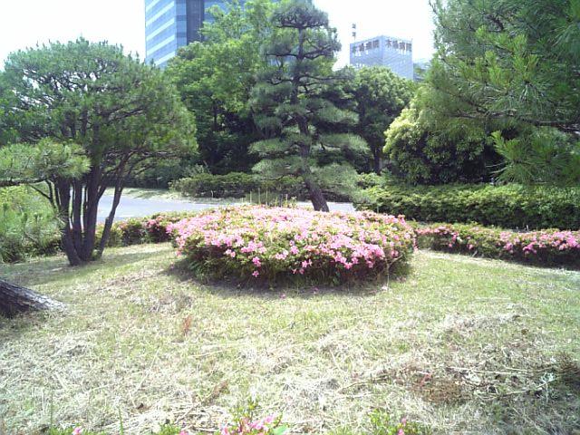 DVC00346.jpg