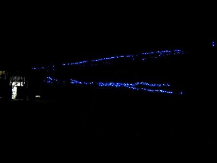 丹沢湖イルミ