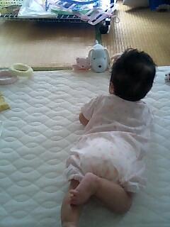 mae_e_susume