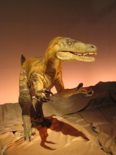 恐竜大陸4