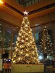 丸ビルクリスマスツリー2005