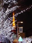 東京タワーとけやき通り