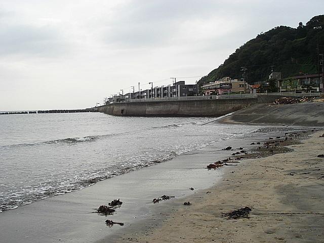 DSC01959.jpg