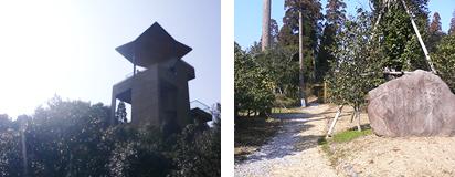 椿山森林公園02